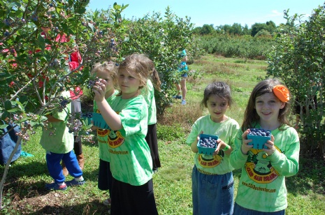 Berry picking with camp Gan Izzy!